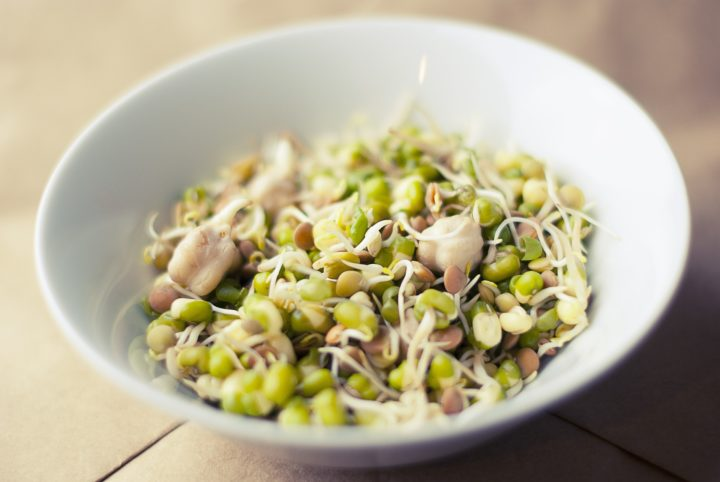 豆とモヤシ