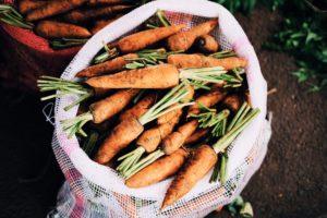 オーガニック(有機栽培)された野菜