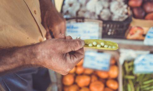 豆を見つめるお年寄りの男性