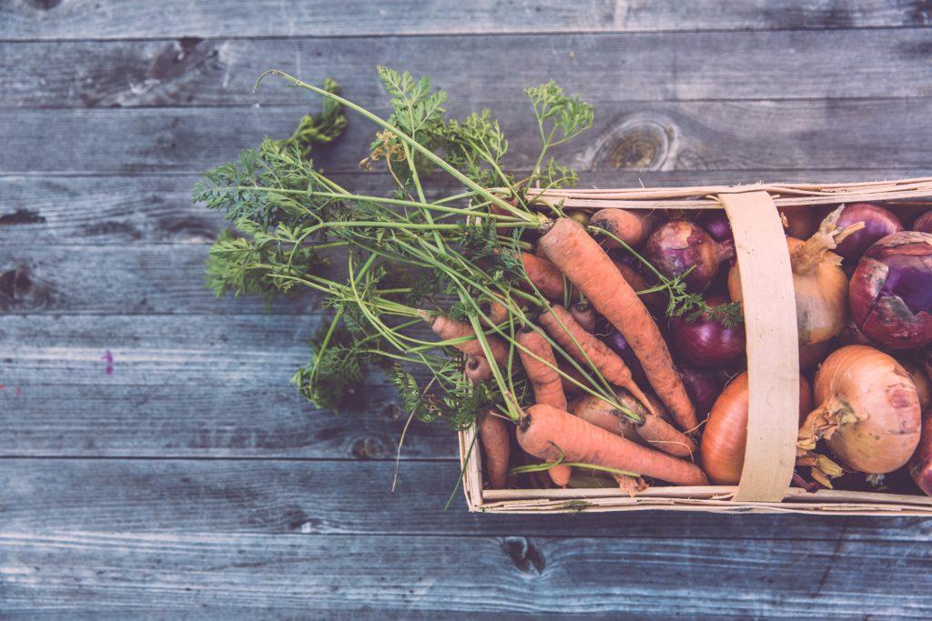タンパク源としては疑問も多い、お野菜などの植物性の食材たち