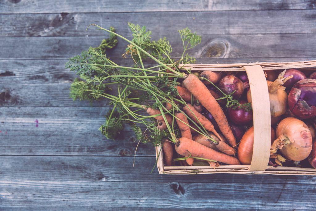植物した食べないヴィーガンが不足しがちなタンパク質