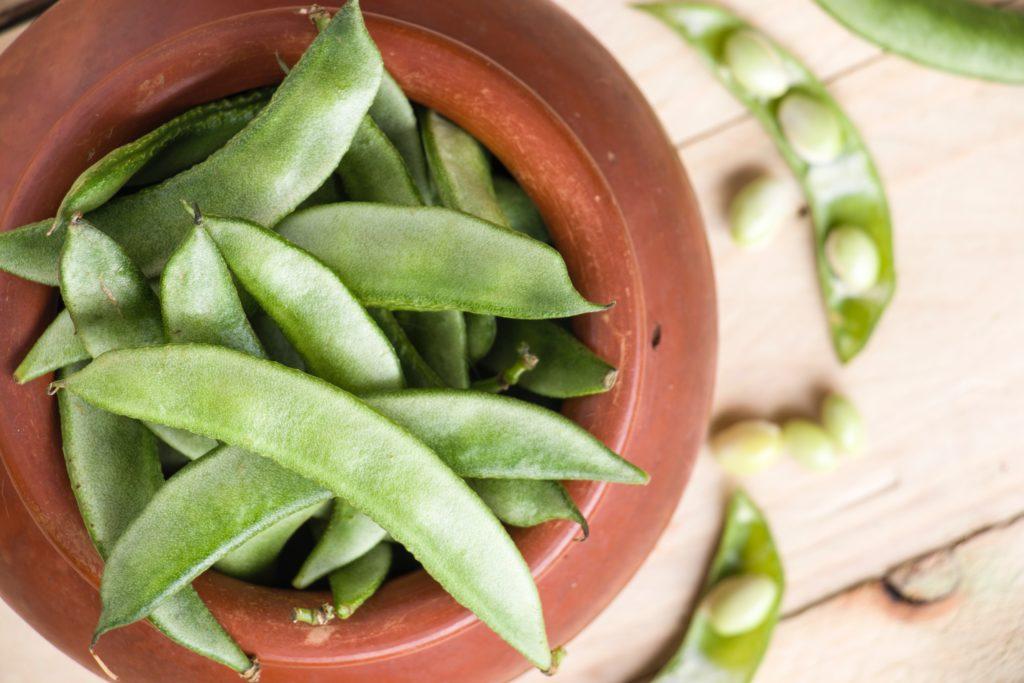 ヴィーガンにとって大切なタンパク源の豆