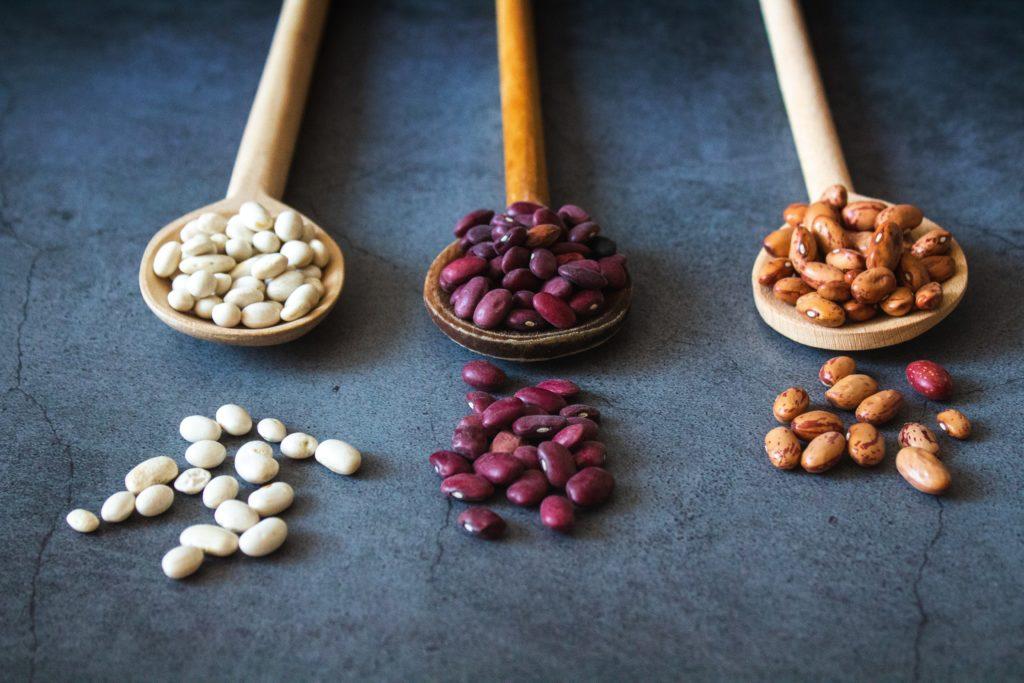 アミノ酸バランスが大切な豆などのヴィーガンタンパク質
